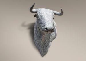 Cabeza de toro